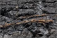 Lignit... Niederrheinisches Braunkohlenrevier *NRW*